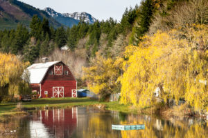Brinnon in the Fall in North Hood Canal on the Olympic Peninsula