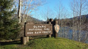 Hoh Rain Forest sign in Olympic National Park