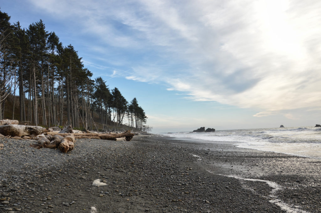 Ruby Beach on the Olympic Peninsula