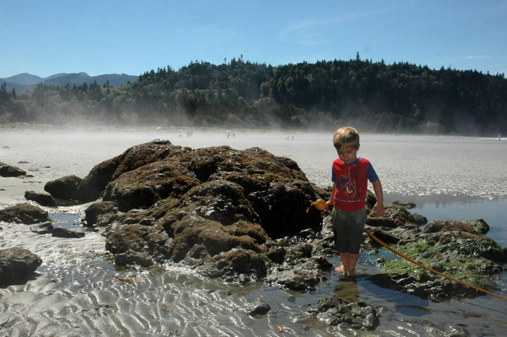 Salt Creek tidepools on the Olympic Peninsula, WA